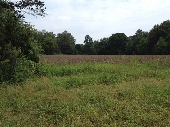 Lots and Land - Somerville, TN (photo 2)