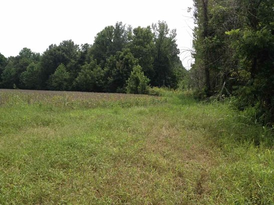 Lots and Land - Somerville, TN (photo 3)