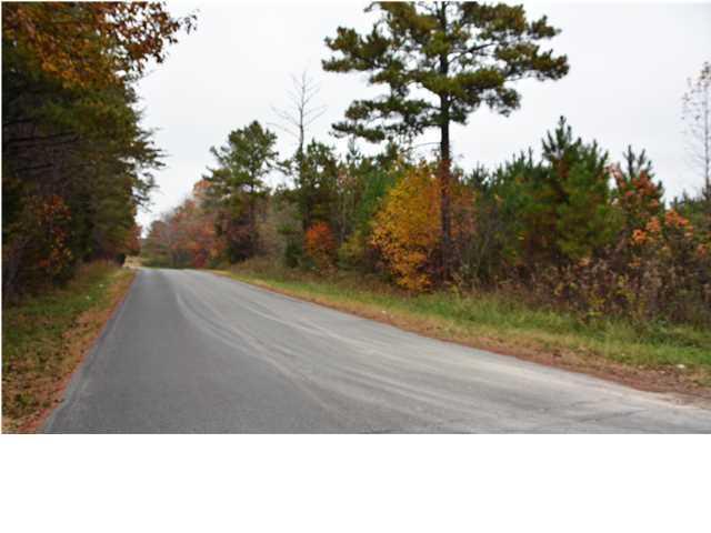 Lots and Land - Ocoee, TN (photo 1)