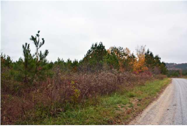 Lots and Land - Ocoee, TN (photo 2)