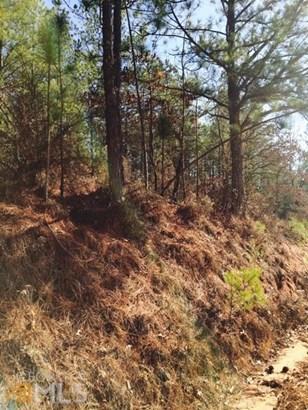 Lots and Land - Cumming, GA (photo 2)