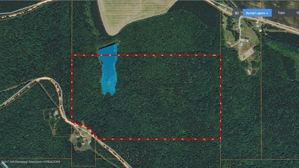 Lots and Land - Hickory Flat, MS (photo 1)