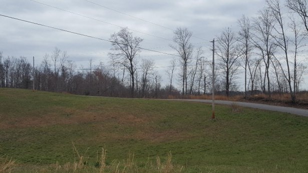 Lots and Land - Silver Point, TN (photo 2)