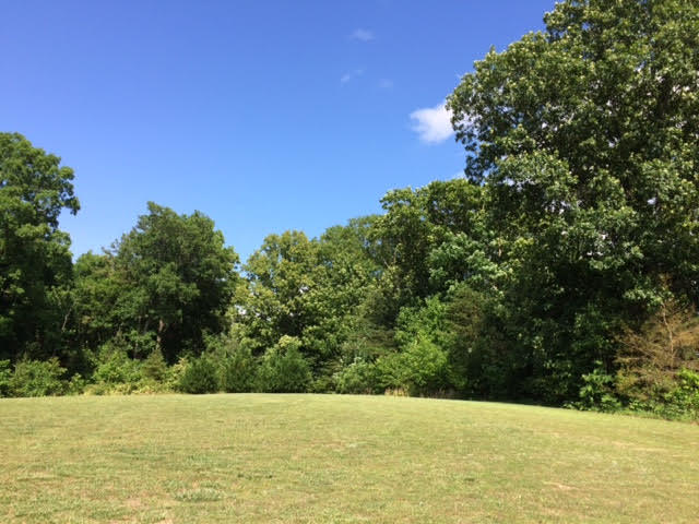 Lots and Land - Dunlap, TN (photo 1)
