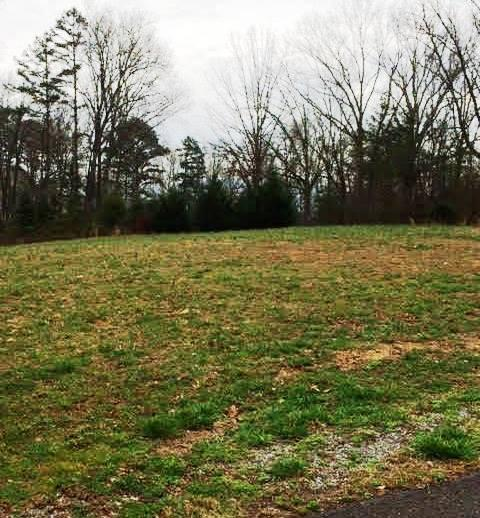 Lots and Land - Dunlap, TN (photo 5)
