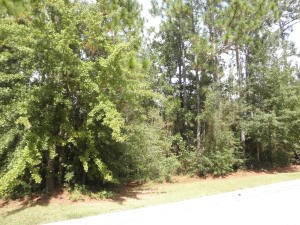 Lots and Land - Hattiesburg, MS (photo 2)