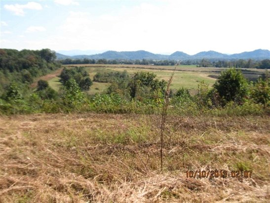 Lots and Land - Englewood, TN (photo 2)