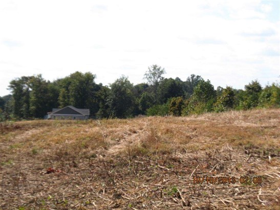 Lots and Land - Englewood, TN (photo 3)