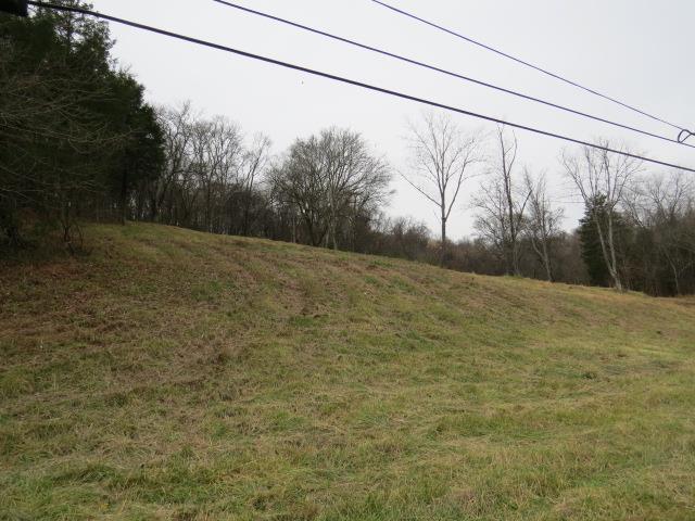 Lots and Land - Pulaski, TN (photo 3)