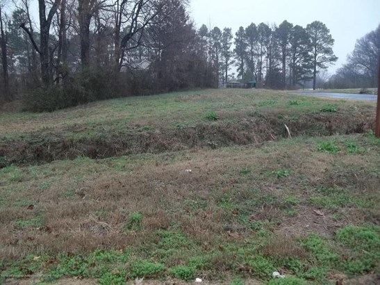 Lots and Land - Horn Lake, MS (photo 2)