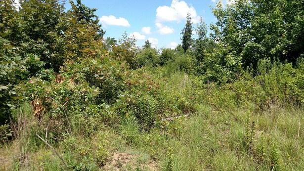 Lots and Land - Apison, TN (photo 2)