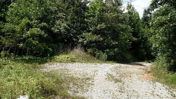 Lots and Land - Apison, TN (photo 5)