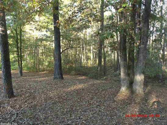 Lots and Land - Mabelvale, AR (photo 5)