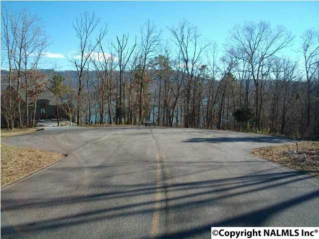 Lots and Land - SCOTTSBORO, AL (photo 5)