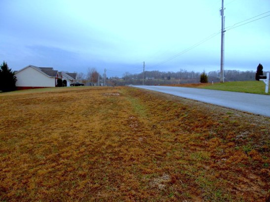 Lots and Land - COOKEVILLE, TN (photo 3)