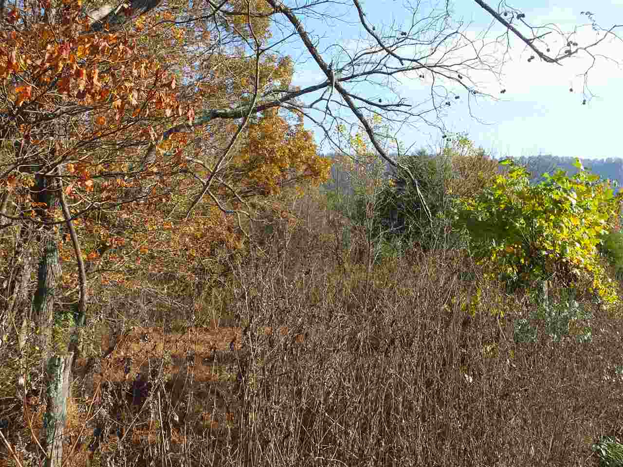 Lots and Land - Thorn Hill, TN (photo 4)
