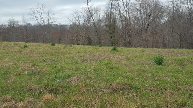 Lots and Land - Silver Point, TN (photo 5)