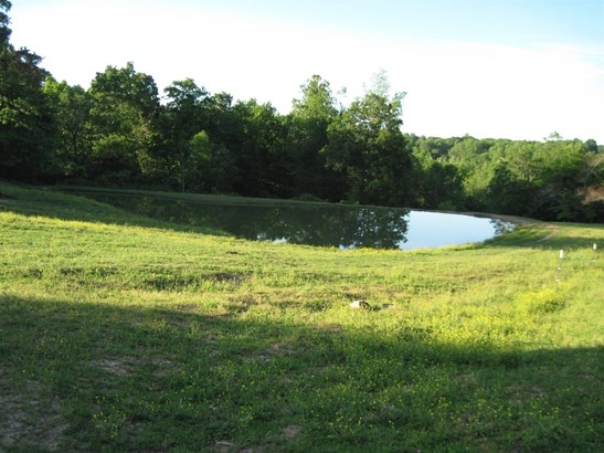 Lots and Land - Dickson, TN (photo 3)
