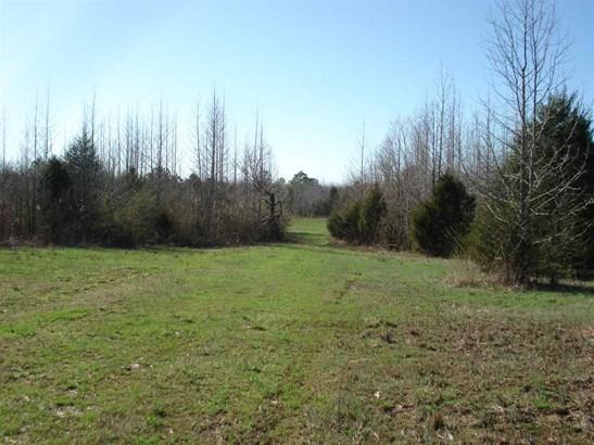 Lots and Land - Saltillo, TN (photo 2)