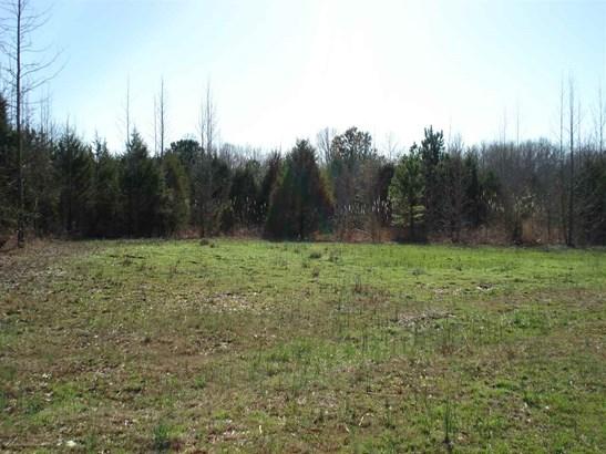 Lots and Land - Saltillo, TN (photo 4)