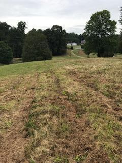 Lots and Land - Ringgold, GA (photo 5)