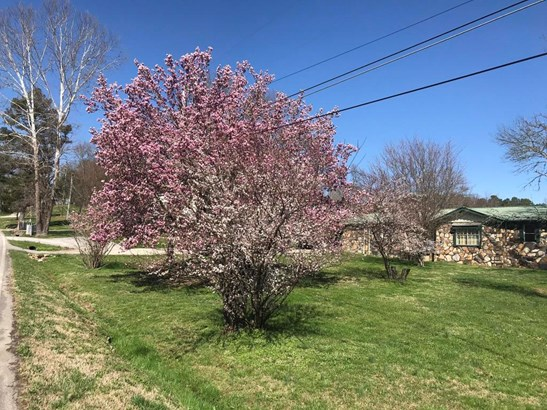 Residential/Single Family - Sale Creek, TN (photo 3)
