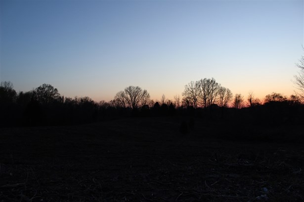 Lots and Land - Friendship, TN (photo 2)