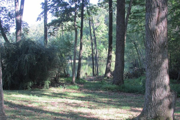 Lots and Land - Nesbit, MS (photo 3)