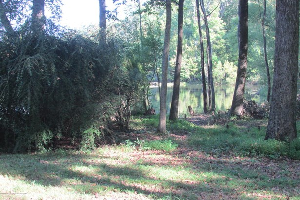 Lots and Land - Nesbit, MS (photo 4)