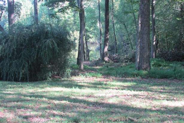 Lots and Land - Nesbit, MS (photo 5)