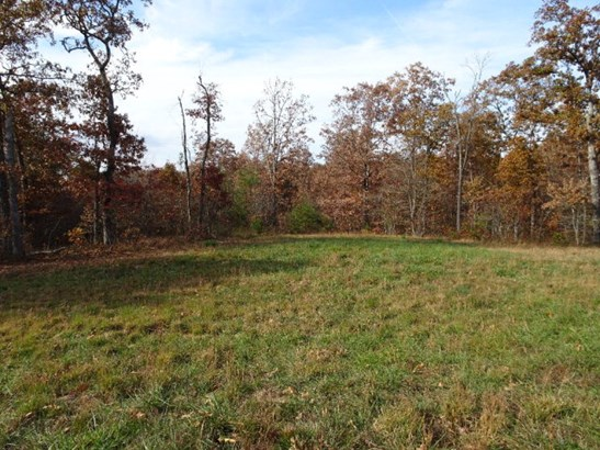 Lots and Land - Spencer, TN (photo 1)