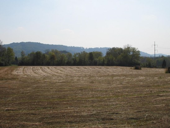Lots and Land - Sweetwater, TN (photo 3)
