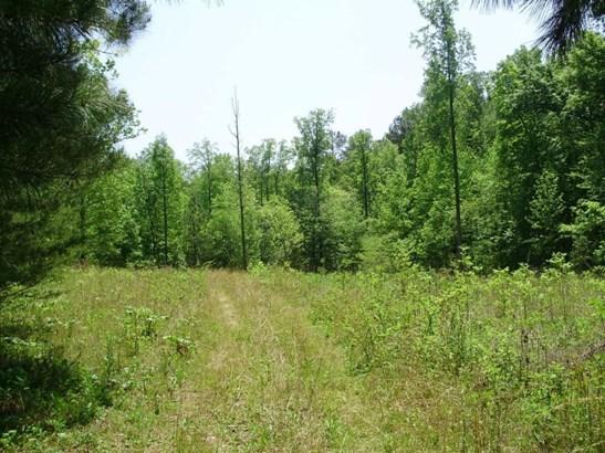 Lots and Land - Dawsonville, GA (photo 1)