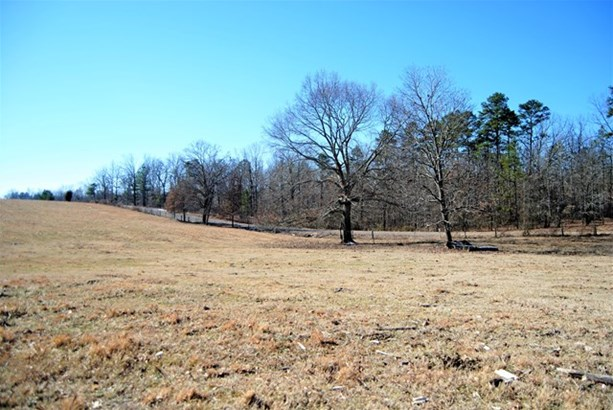 Lots and Land - Florence, AL (photo 5)