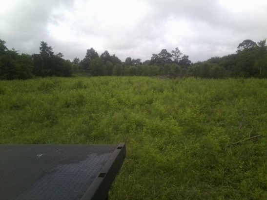 Lots and Land - Cleveland, TN (photo 1)