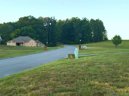 Lots and Land - Russellville, TN (photo 3)