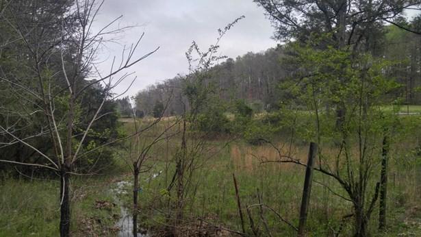 Lots and Land - Lafayette, GA (photo 3)