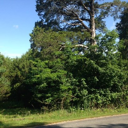 Lots and Land - Culleoka, TN (photo 3)