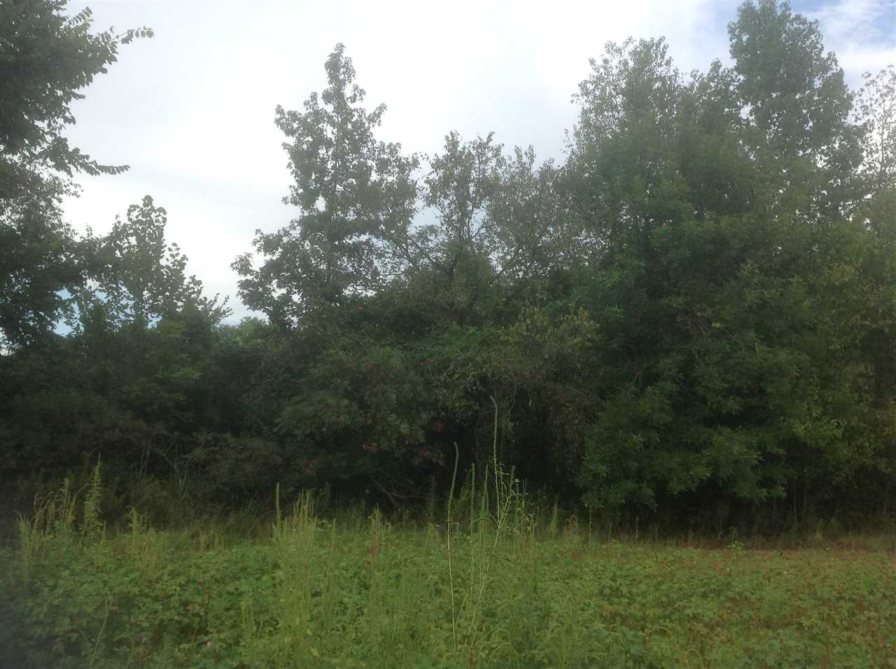 Lots and Land - Brownsville, TN (photo 2)