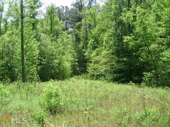 Lots and Land - Dawsonville, GA (photo 4)