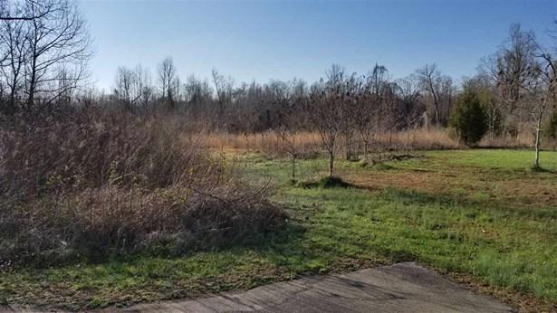 Lots and Land - Jackson, TN (photo 4)