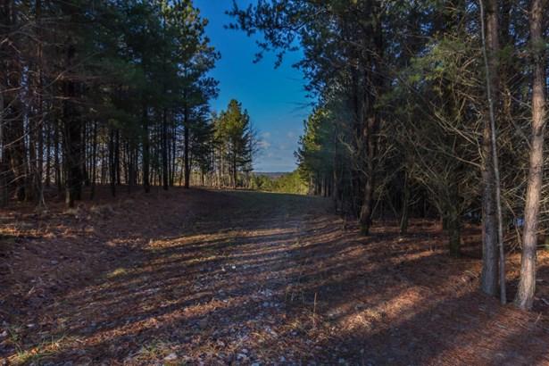 Lots and Land - Graysville, TN (photo 4)