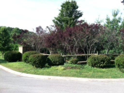 Lots and Land - Sweetwater, TN (photo 2)