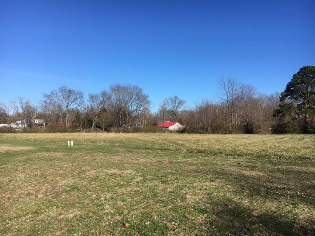 Lots and Land - Hohenwald, TN (photo 4)