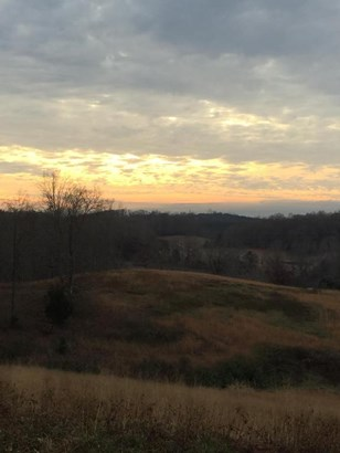 Lots and Land - Niota, TN (photo 1)