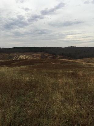 Lots and Land - Niota, TN (photo 4)