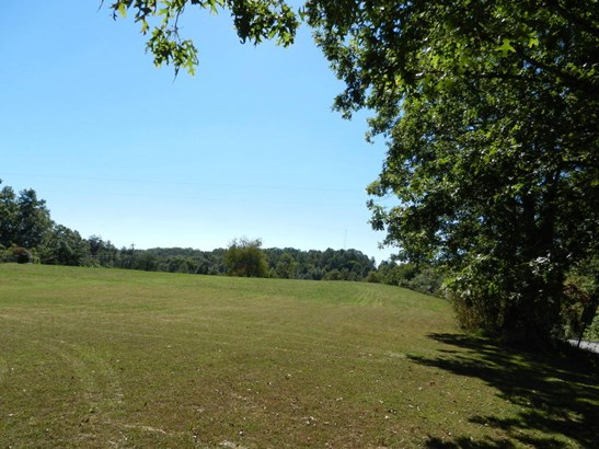 Lots and Land - Helenwood, TN (photo 2)