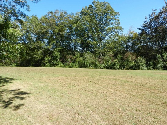 Lots and Land - Helenwood, TN (photo 4)