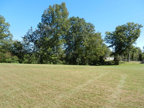 Lots and Land - Helenwood, TN (photo 5)