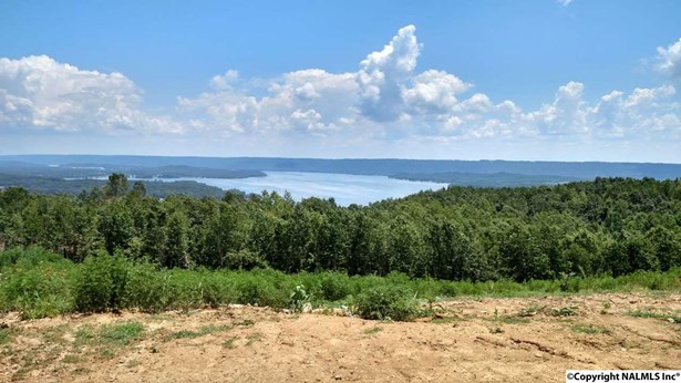 Lots and Land - SCOTTSBORO, AL (photo 1)